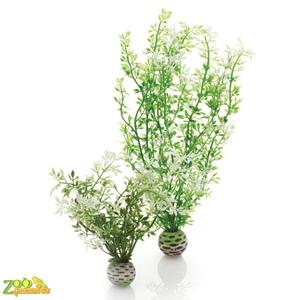 Растение Biorb Easy Plant Winter Flower (2шт) арт.PL11
